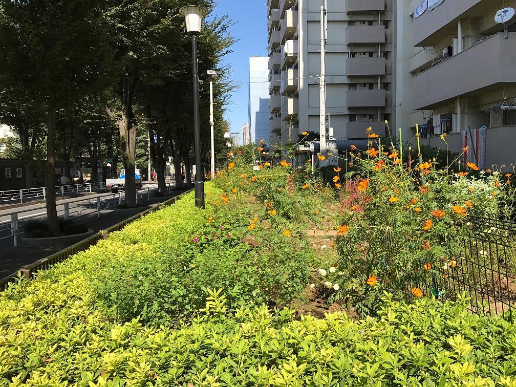 Thuê nhà chính phủ Nhật(県営、市営住宅)