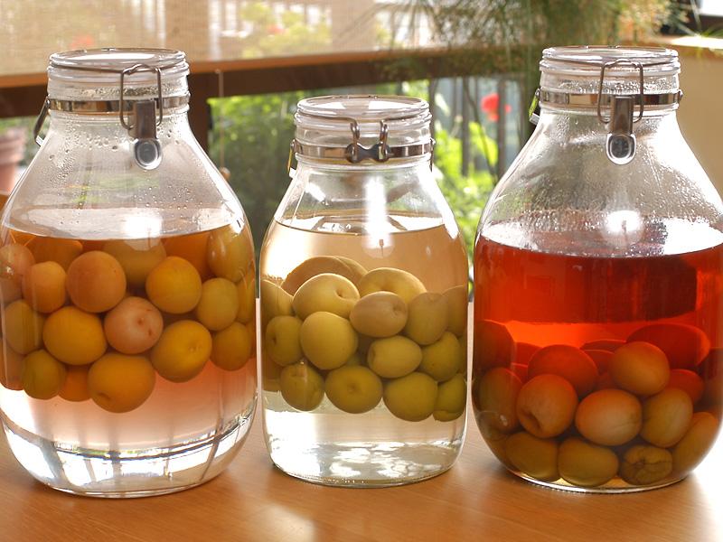 Cách làm rượu mơ Umeshu kiểu Nhật